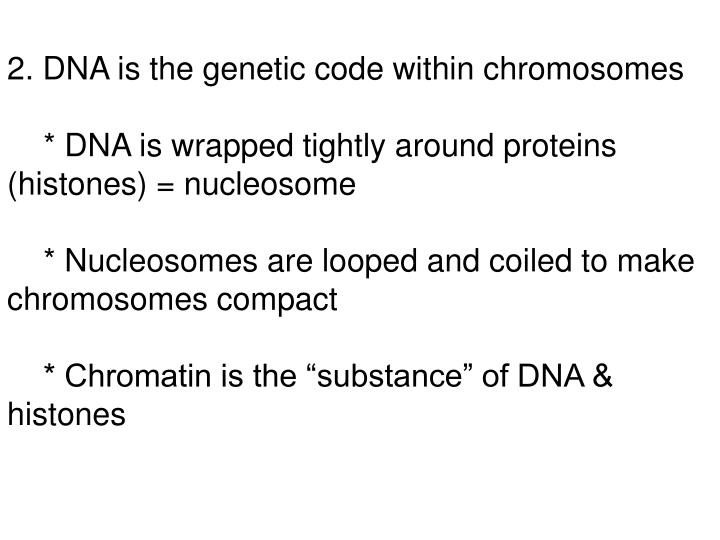 2. DNA is the genetic code within chromosomes