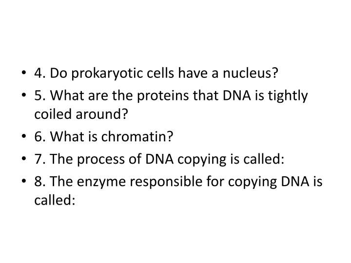4. Do prokaryotic cells have a nucleus?