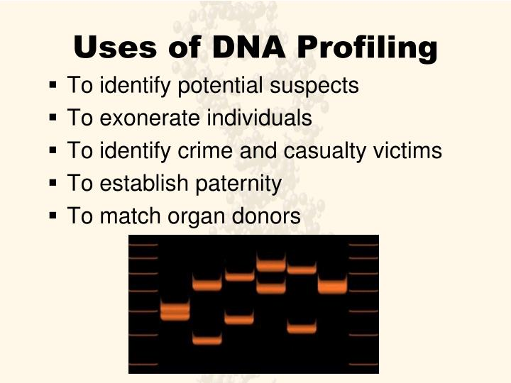 Uses of DNA Profiling