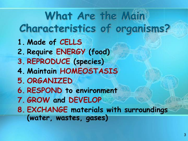 What are the main characteristics of organisms