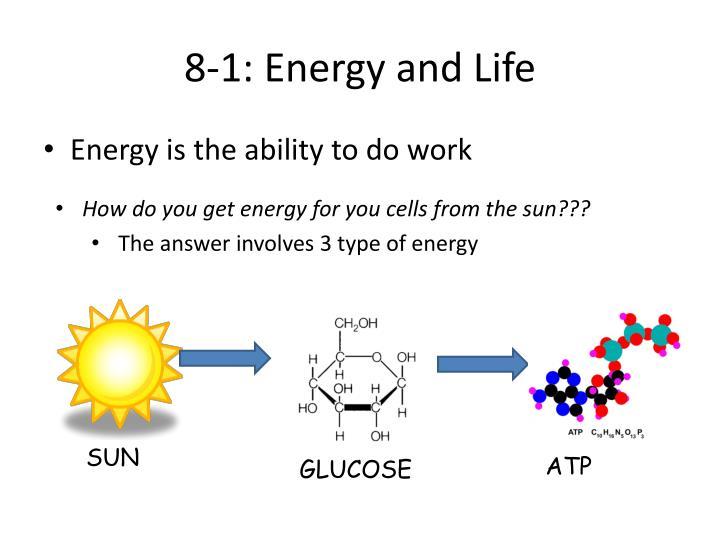 8-1: Energy and Life
