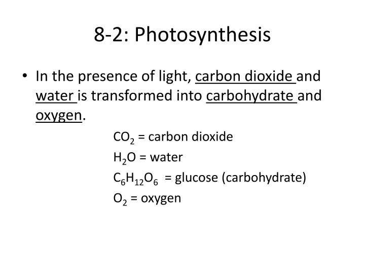 8-2: Photosynthesis