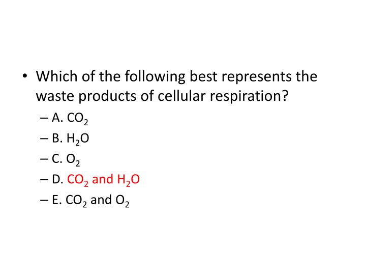 Which of the following best represents the waste products of cellular respiration?