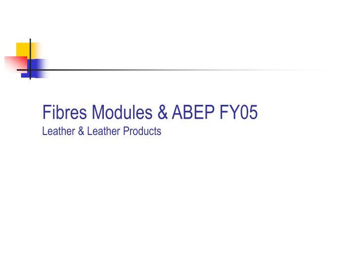 Fibres Modules & ABEP FY05
