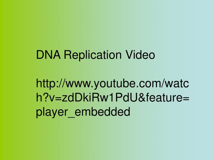 DNA Replication Video
