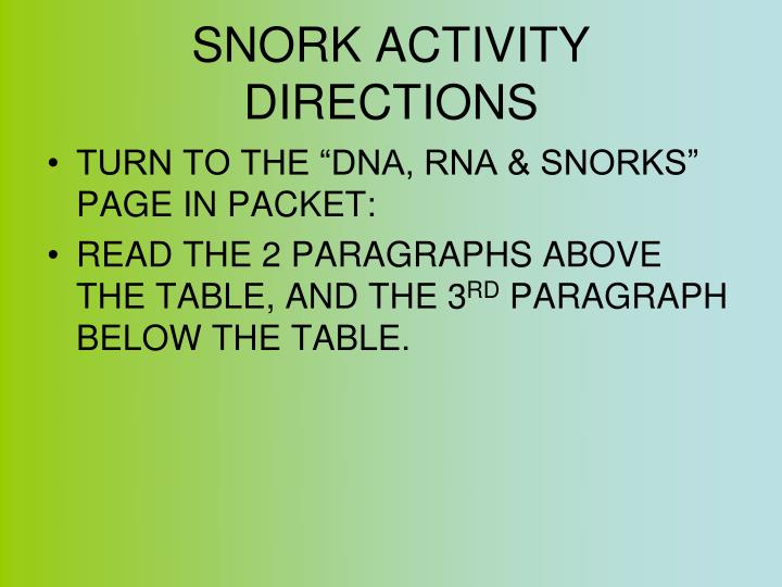 SNORK ACTIVITY DIRECTIONS
