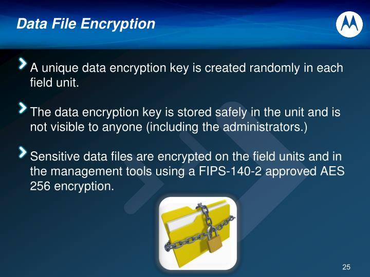 Data File Encryption