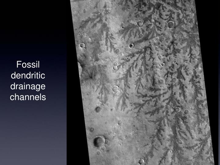 Fossil dendritic drainage channels