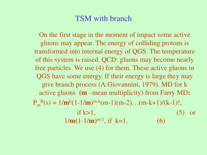 TSM with branch