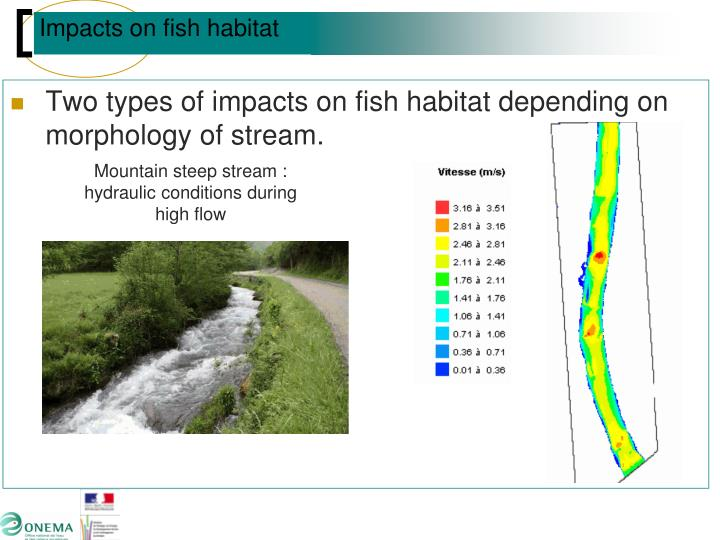 Two types of impacts on fish habitat depending on morphology of stream.