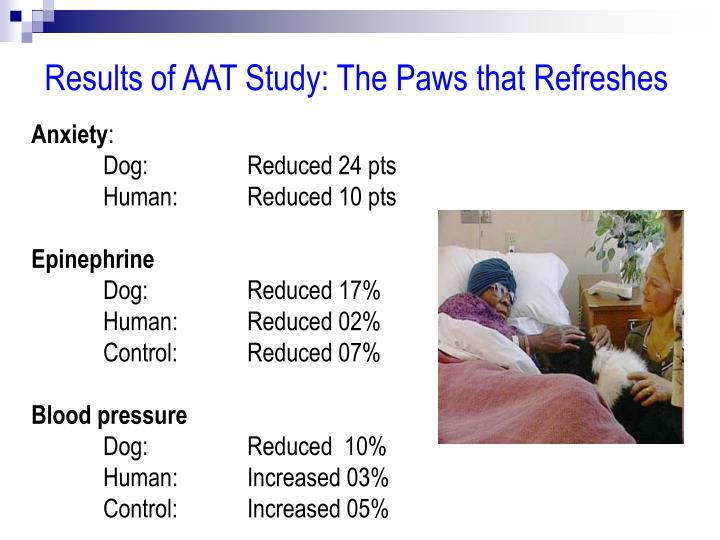 Results of AAT Study: The Paws that Refreshes