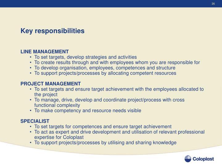 Key responsibilities