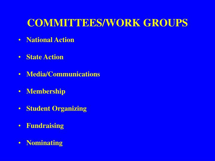 COMMITTEES/WORK GROUPS