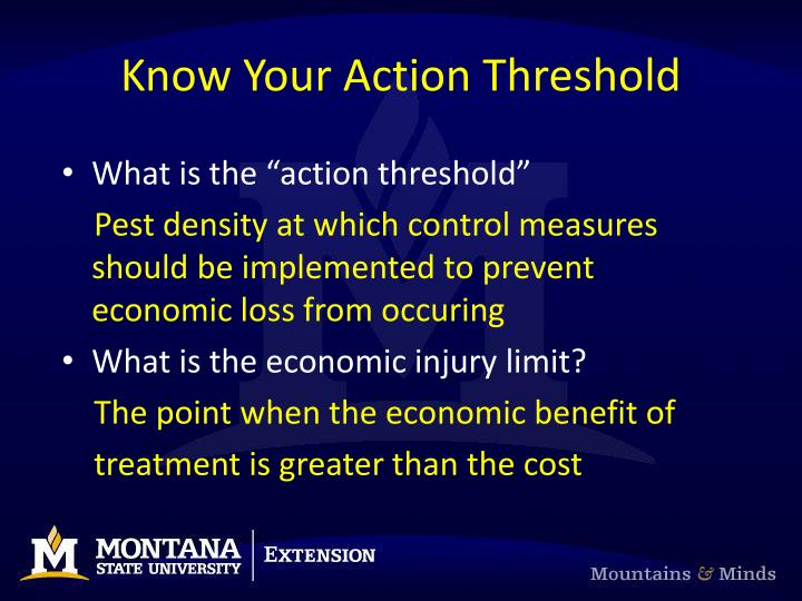 Know Your Action Threshold