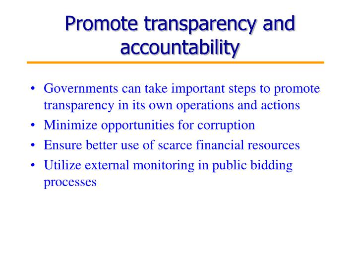 Promote transparency and accountability