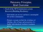 recovery principles brief overview