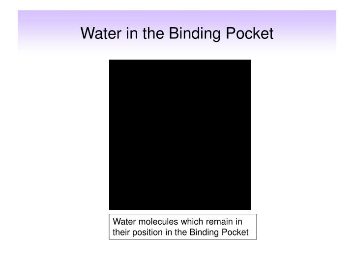 Water in the Binding Pocket