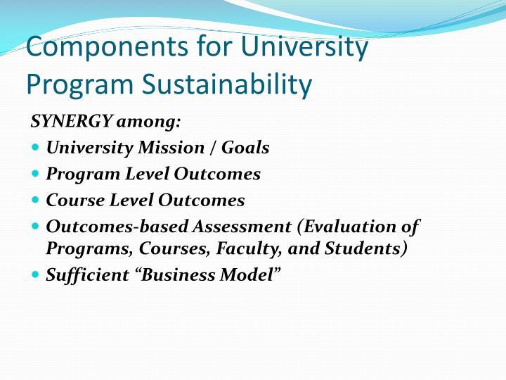 Components for University Program Sustainability