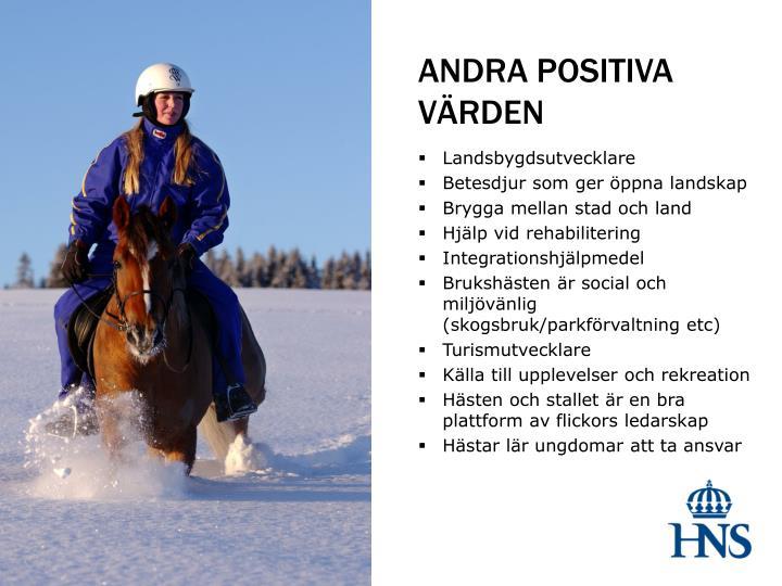 ANDRA POSITIVA VÄRDEN