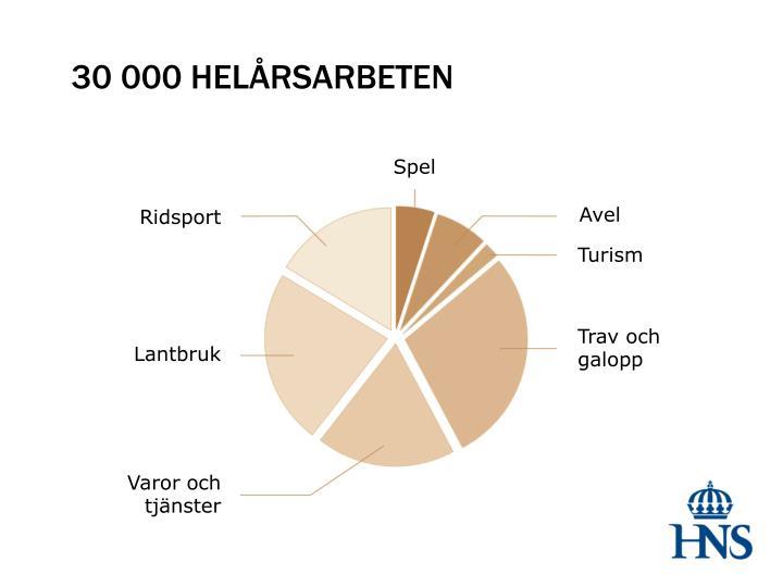 30 000 HELÅRSARBETEN