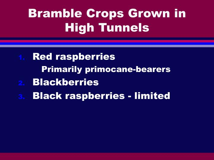 Bramble Crops Grown in High Tunnels