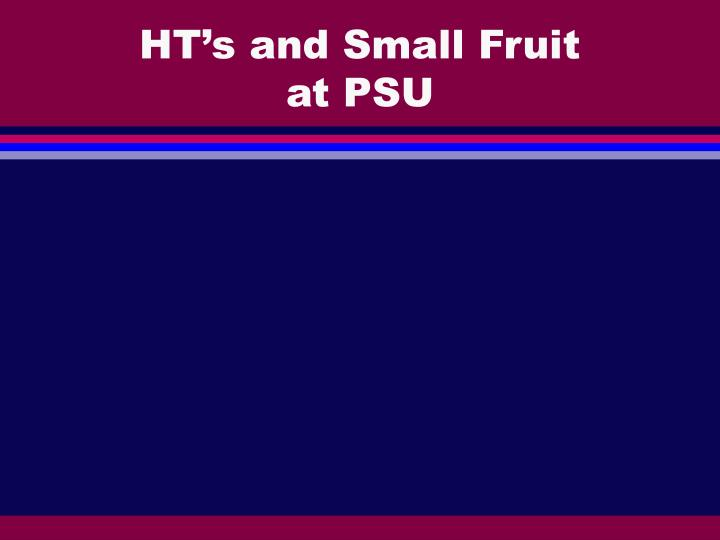HT's and Small Fruit