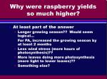 why were raspberry yields so much higher