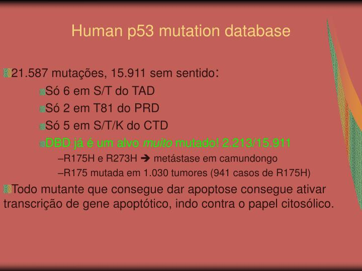 Human p53 mutation database