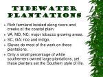 tidewater plantations