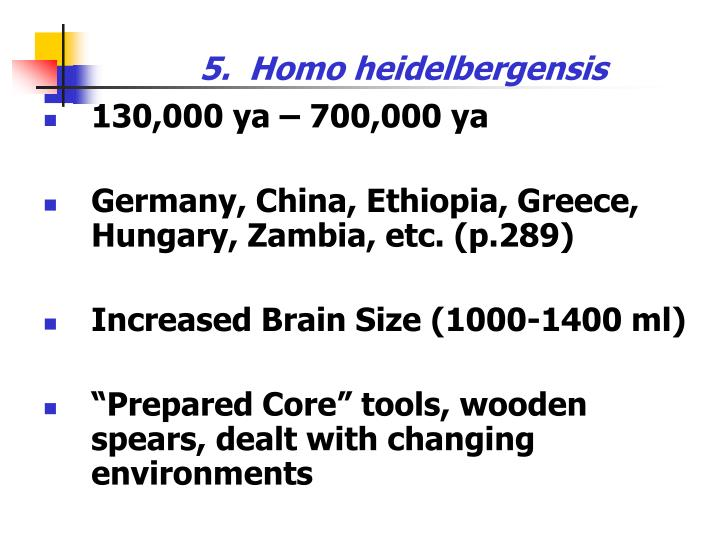5.  Homo heidelbergensis