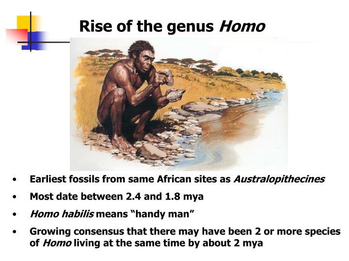 Rise of the genus