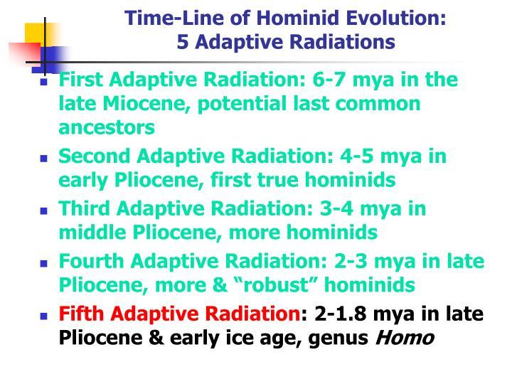 Time-Line of Hominid Evolution:
