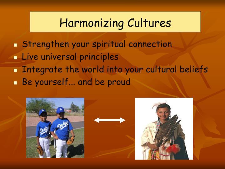 Harmonizing Cultures