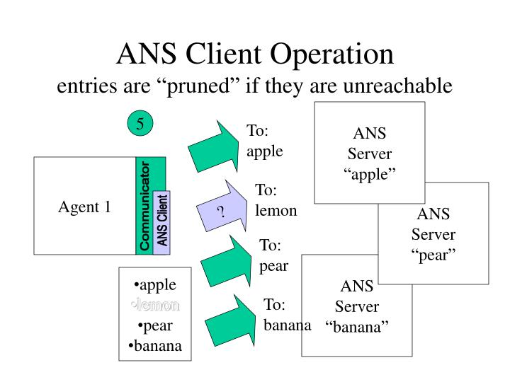 ANS Client Operation