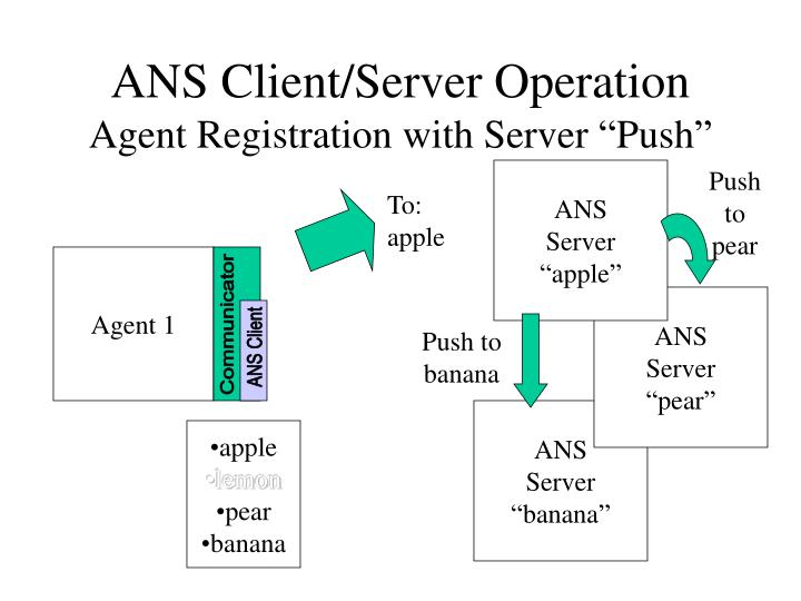 ANS Client/Server Operation