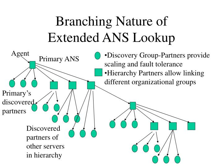 Branching Nature of