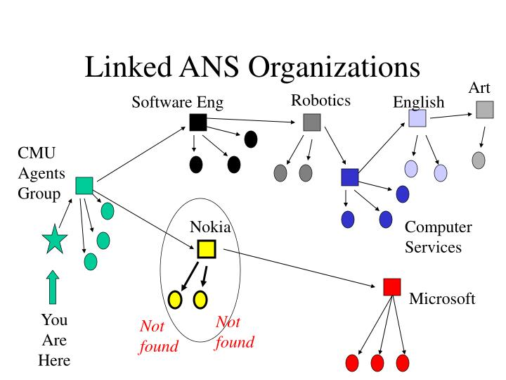 Linked ANS Organizations
