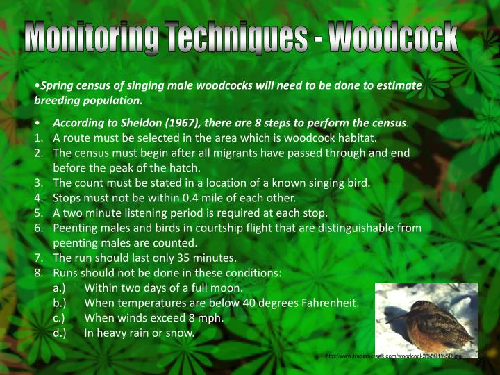 Monitoring Techniques - Woodcock