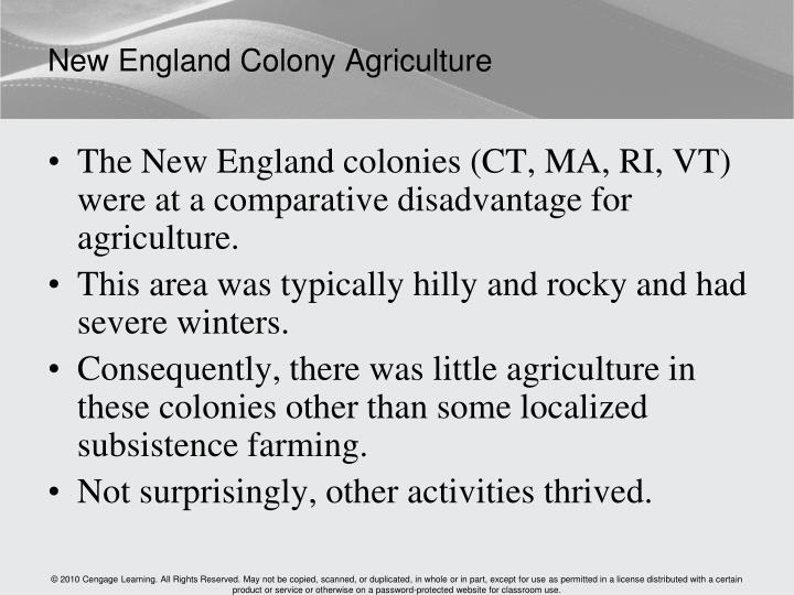 New England Colony Agriculture