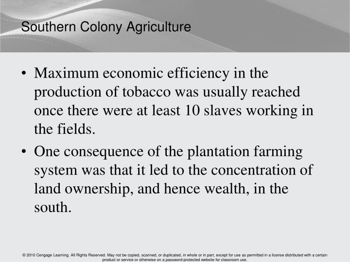 Southern Colony Agriculture