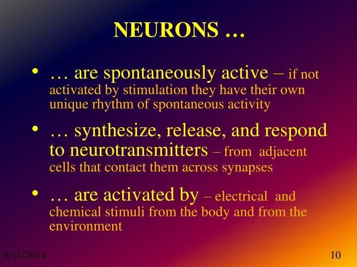 NEURONS …