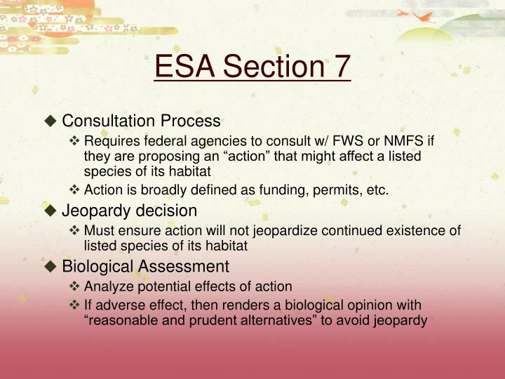 ESA Section 7