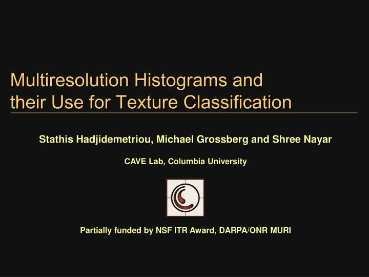 Multiresolution histograms and their use for texture classification