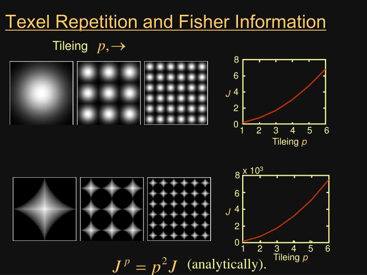 Texel Repetition and Fisher Information
