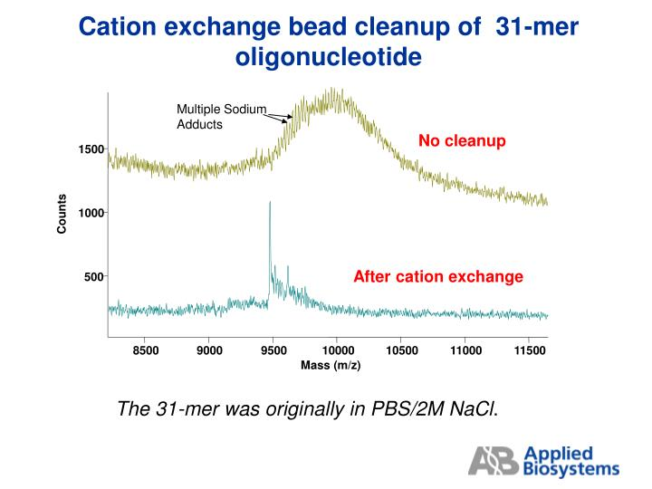 Cation exchange bead cleanup of  31-mer oligonucleotide