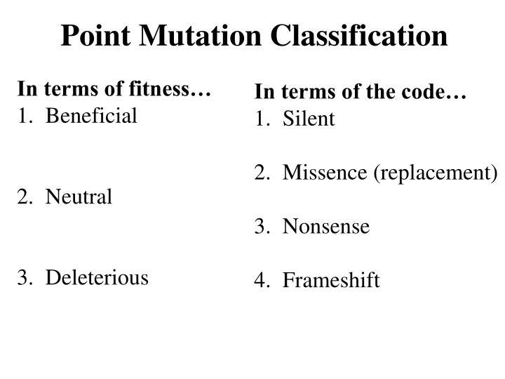 Point Mutation Classification