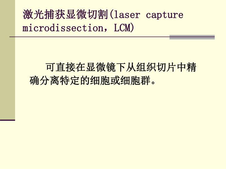 激光捕获显微切割