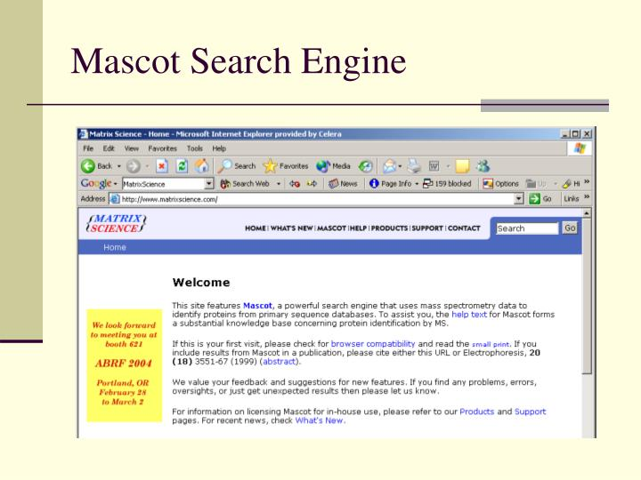 Mascot Search Engine