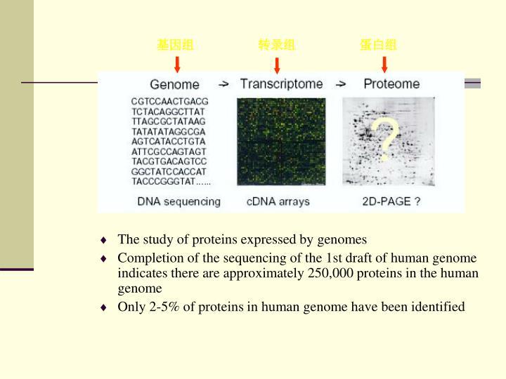 基因组                    转录组                    蛋白组