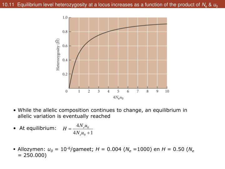 10.11  Equilibrium level heterozygosity at a locus increases as a function of the product of